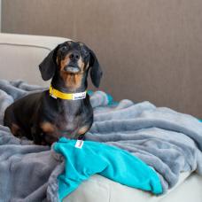 Doodlebone Faux Fur Dog Blanket