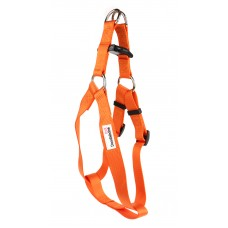 Doodlebone Bold Dog  Harness