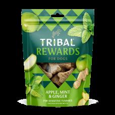 Tribal Rewards Apple, Mint & Ginger