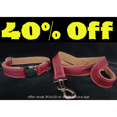 Brindle  Leather Dog Collar